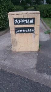 DSC_0179